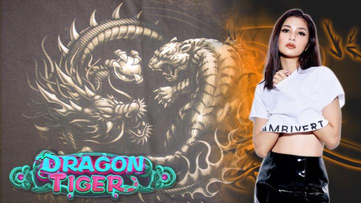 Pilih Agen Dragon Tiger Resmi Demi Karir Berjalan Mulus